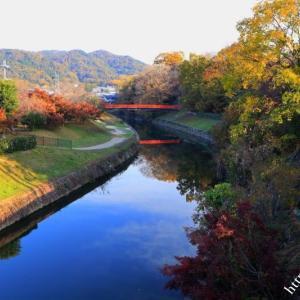 竜田公園の紅葉