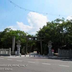 大山祇神社(おおやまづみじんじゃ)乎知命御手植の楠