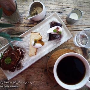 新オープン お茶とおやつと日用品 草々(sousou)3種盛りケーキセット