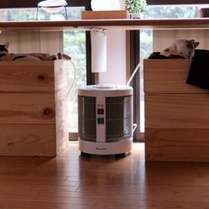 冬の猫と暖話室
