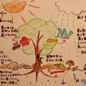 コロナ・自然災害・人、そして園庭や地域 2 〜子どもたちへ園庭や地域ができることは?〜