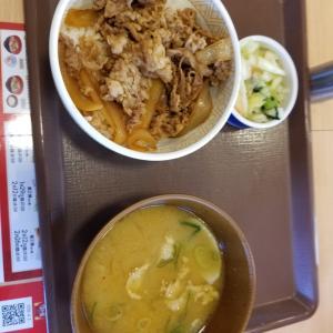 和歌山県の有田市のすき家でカレーとん汁食べました