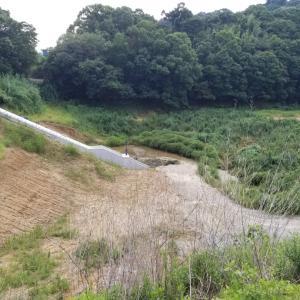 和歌山県の湯浅町の吉川にある昔溜池だったところ散歩してみました