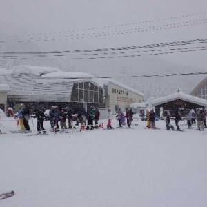 正月3が日はガキ共連れてスキーざんす。