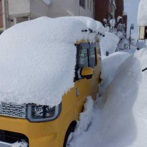 大雪日記 其の弐 タートル11とROB23を救出せよ。