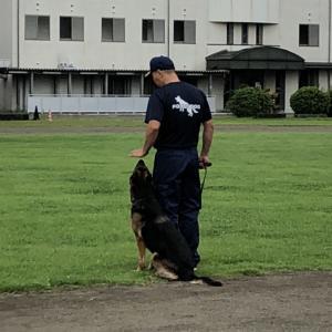 栃木県警察学校  実演