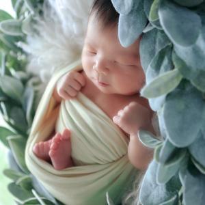 赤ちゃんの写真を特別に撮りたいなら