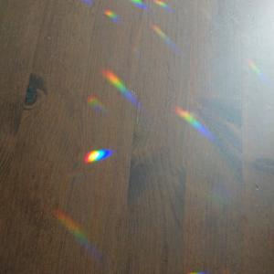 虹色水玉病の季節