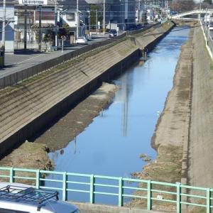 琵琶橋の上流はスッキリ 下流はモコモコ(新河岸川)