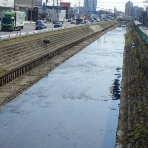 スッキリ直線の新河岸川を上流から見ると(杉下橋の上下流)