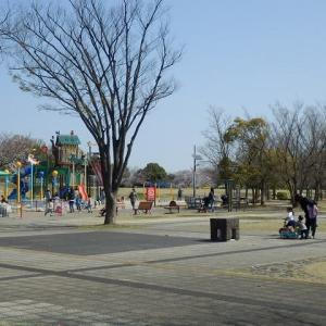 川越運動公園のサクラ スポーツや散歩を楽しむ人たち