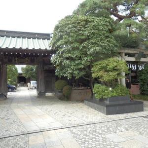白狐 コンと出そうな 稲荷かな(雪塚稲荷神社)