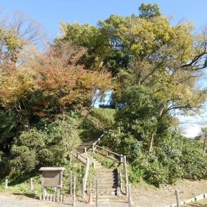 やぐら跡想像で見る初日の出(川越城富士見櫓跡)