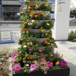 八段の鉢にあふれる花色々(U_PLACE)