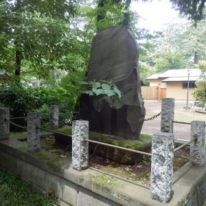 石碑裏アカメガシワの花が咲き(喜多院・故周防守松平寛隆公舊塋碑)