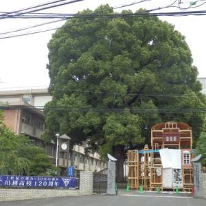 第72回 くすのき祭の入場門製作中・県立川越高校