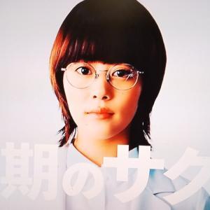 見はじめた冬ドラマは阿部ちゃんに期待。