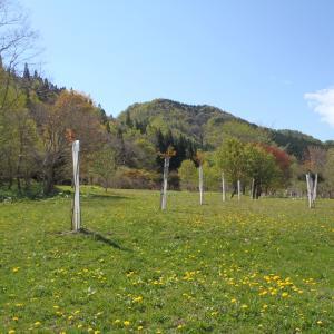 函館自然観察会・健康の森