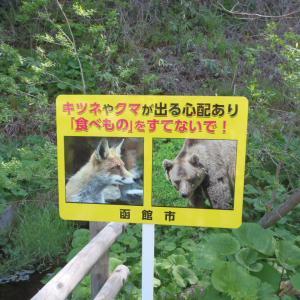 大人の遠足・健康の森