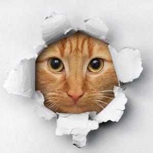 エアコン室内配管カバーDIYで、まさかの大穴!大失敗か!