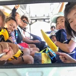 【フィリピン親子留学滞在記】7回行ってるマニアが教える。ドゥマゲッティからジンベイザメウォッチングの最速最安値の行き方