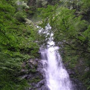 爽凉-瀬戸の滝
