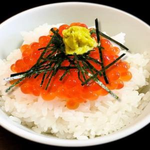鮭卵の〆丼 ~イクラはオレンジ色の宝石のよう~