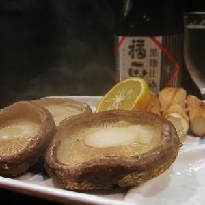 生椎茸の魅力 ~原木で美味しい椎茸を育てた経験~