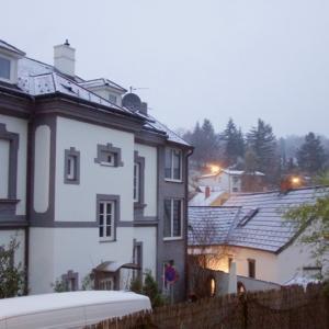 クロスターノイブルクで初雪とこーちゃん