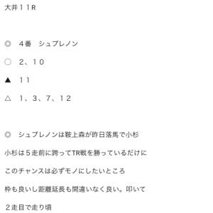 大井11Rは惜敗涙  大井12R有料情報