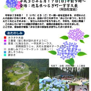 徳島県の紫陽花おばあちゃん