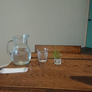 三豊のカフェ