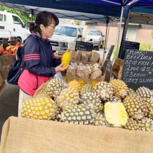 Carseldine Market