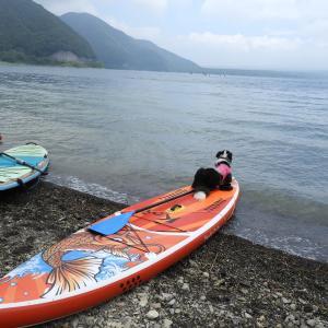 ドッグトレーナー達の夏休み1泊2日の本栖湖&西湖 Part1
