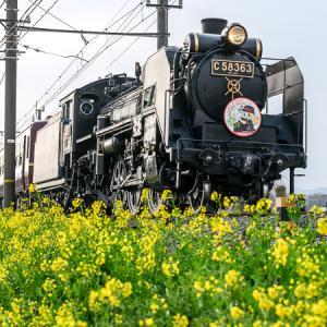 春の序曲 (秩父鉄道)