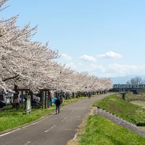 濁川桜並木 (磐越西線)