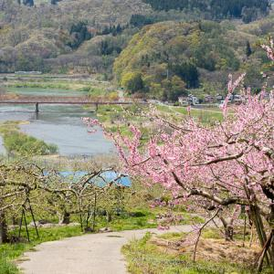 春から初夏へ (飯山線)