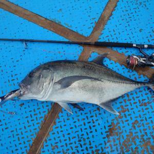 2021/01/17 南西海域 釣り始め