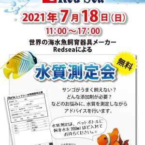 今日は RedSea水質検査会