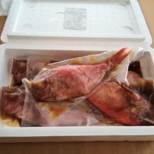 """▼久しぶりにキンメが食べたくなって!静岡県西伊豆町より""""金目鯛煮付け""""お取り寄せ▼"""