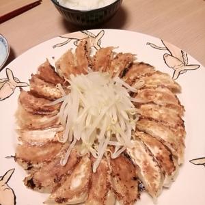●30%オフクーポン使って浜松餃子をお取り寄せ♪「我慢の3連休」は『ひろかね』の餃子で自宅ご飯●