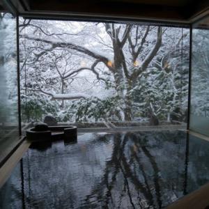 ~雪見風呂が恋しい(・´ω`・)~ 再訪したい5宿