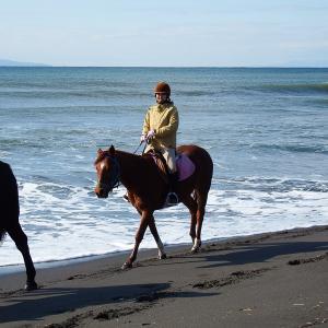 10数年ぶりに海岸外乗へ行ってきました