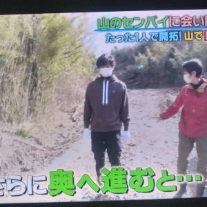 TBS 『NEWSな2人』山を買う・馬を山で飼う