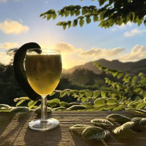 緑色の美しいものたくさん きゅうりジュース