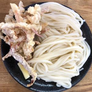 【 手打うどん ちえ福 】俺流のいかざるうどんと、おむすびの天ぷら。