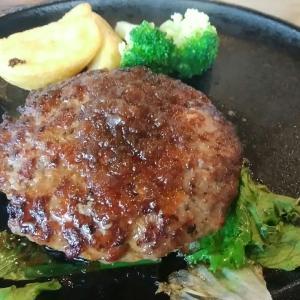 ステーキのあさくま 八熊店~コロナ対策はバッチリでした!