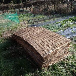 畳をはやく堆肥にする方法(2020年11月29日)