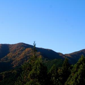 武川岳・大持山・ウノタワ 紅葉真っ盛り