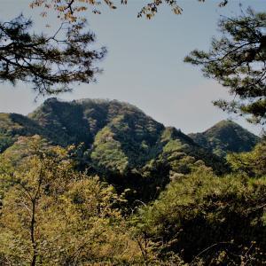この時期の武川岳も素晴らしかった